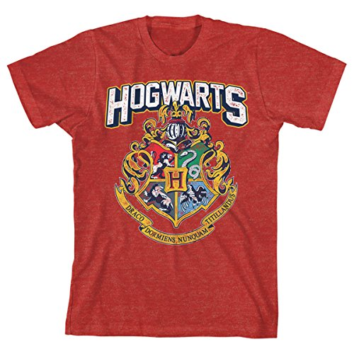HARRY POTTER Hogwarts Distressed Boys Youth T-Shirt Licensed (Small, Red Heather)]()