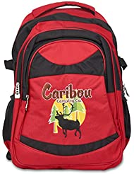 The Eco-Friendly Daypack™ by Caribou Camping Co. | The ONLY Backpack made from Recycled Materials. | 100% Recycled...