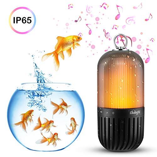 Bluetooth Outdoor Lighting in US - 5