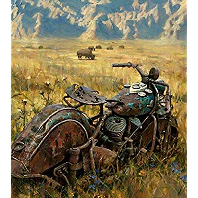 Adult Puzzle 1000 Piece Classic Jigsaw Puzzle Children Puzzle Wooden Puzzle DIY Dilapidated Motorcycle in The Grass Modern Festival Gift Home Decor Unique Gift Intellectual Game Wall Art 75x50cm: Toys & Games