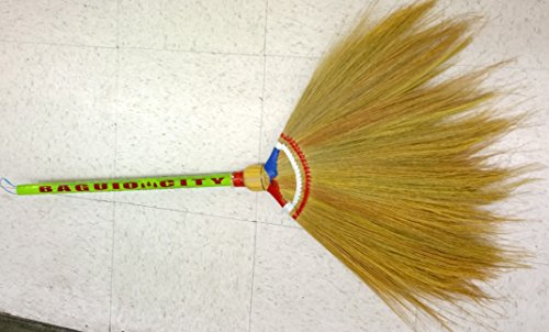 Whisk Broom Or Walis Tambo Philippine Made Buy Online In