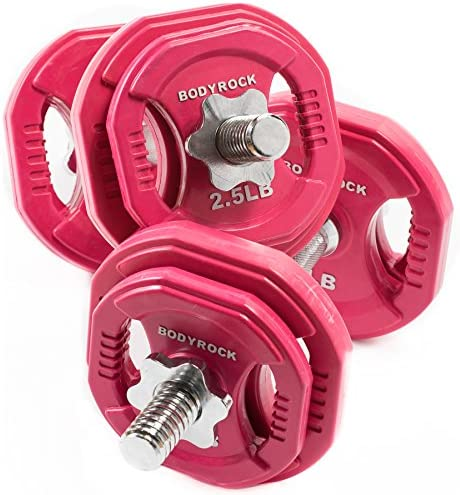 Dumbbells Set with 30lb Weight Plates BodyRock Free Weights Home Gym Equipment – Dumbbell Sets with Two Solid Steel Threaded Dumbbell Handles and Collars, Four 5 lb Weights and Four 2.5 lb Weights