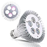 J&C Full Spectrum White Light LED Grow Light Bulb, 5W Natural Plant Light for Greenhouse Gardening, Indoor Sunlight for Vegetables, Grow Bulb for Indoor Hydroponic Plants, E27 Base Review