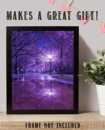 (Purple Blossoms Rainy Reflections By Street Light - 8 x 10