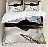 Full Size Driftwood 3 PCS Duvet Cover Set, Landscape of Lake Shoreline with the Dead Tree Trunk in the Water Digital Print, Bedding Set Quilt Bedspread for Children/Teens/Adults/Kids, Sand Brown