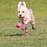 RC Sport PAWks Dog Boots Extra Small Lime