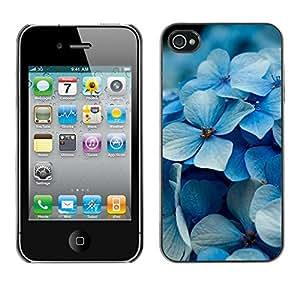Stuss Case / Funda Carcasa protectora - Dull Iced Petals - iPhone 4 / 4S