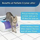 PetSafe ScoopFree Reusable Cat Litter Tray with