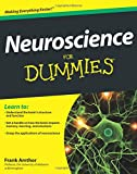 Neuroscience For Dummies by Frank Amthor Picture
