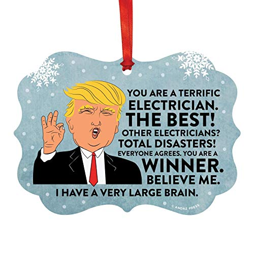 Andaz Press President Donald Trump Fancy Frame Keepsake Christmas Ornament Gag Gift, Terrific Electrician, 1-Pack, Funny Metal Holiday Present Ideas Republican Political Satire for Family ()