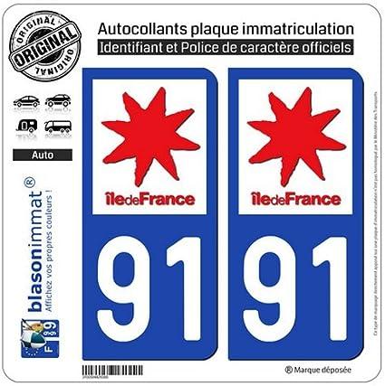 2 Pegatinas para placa de matrícula, 91 Ile-de-France – logotipo: Amazon.es: Coche y moto
