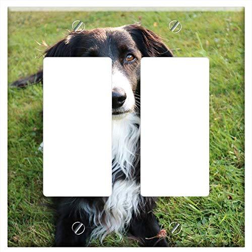 - Switch Plate Double Rocker/GFCI - Border Collie Dog British Sheepdog Purebred Dog
