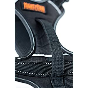 Mighty Paw Sport Harness, No-pull Front Range Dog Harness, Neoprene Padded Lining, Reflective stitching, 2 Leash Attachment Options (Large, Black)
