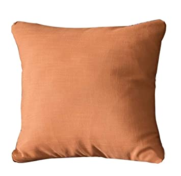 Amazon.com: QWE Sofa Pillow Square Living Room Solid Color ...