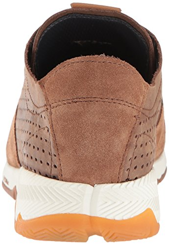 Hush Puppies Men's TS Field Sprint Oxford Brown with paypal cheap the cheapest cheap professional KLbrfY