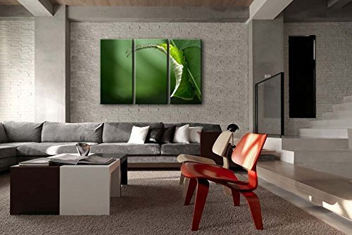 Fashion FreeZone 3 Panel Wall Art Painting Caterpillar Under The Leaf Prints On Canvas The Picture Animal Pictures Oil For Home Modern Decoration Print Decor For Girls Room