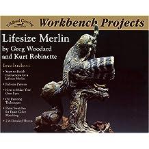Lifesize Merlin: Workbench Projects
