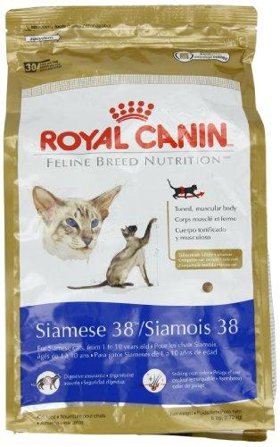 Royal Canin Dry Cat Food, Siamese 38 Formula, 6-Pound Bag