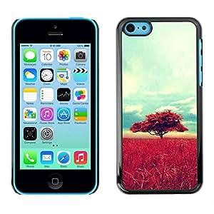 Paccase / SLIM PC / Aliminium Casa Carcasa Funda Case Cover - Africa Savannah Nature Tree Field - Apple Iphone 5C