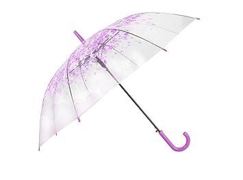 Paraguas con mango largo Pequeño paraguas transparente fresco, paraguas transparente estudiante mango largo, paraguas