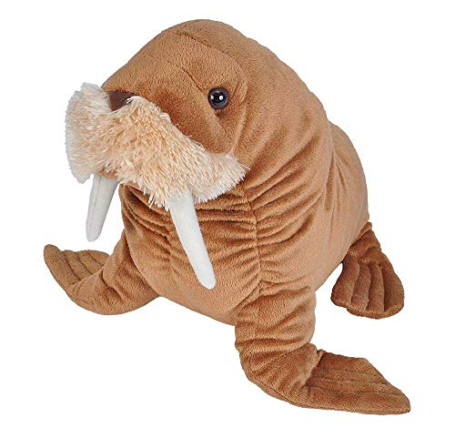 Wild Republic Walrus Plush, Stuffed Animal, Plush Toy, Gifts For Kids, Cuddlekins 12 Inches (Walrus Plush Stuffed Animal)