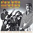 Best of Shane Fenton & Fentones