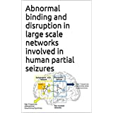 Abnormal binding and disruption in large scale networks involved in human partial seizures
