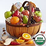 Dried Fruits Ultimate Pack - Same Day Dried Fruit Basket Delivery - Dried Fruit Gifts - Best Dried Fruit Tray- Mixed Dried Fruit - Dried Fruit and Nut Gift Baskets