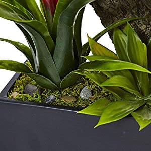 Nearly Natural Dendrobium Orchid and Bromeliad Silk Arrangement, Cream 4