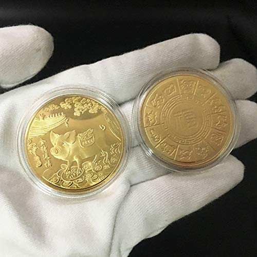 dezirZJjx Memorial Commemorative Coins,2019 Pig Year Commemorative Coin Gilding Present Souvenir Year Craft Gift