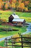 Internet Password Organizer: Country Living (Discreet Password Journal)