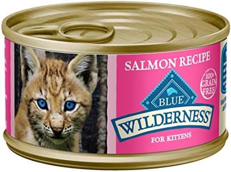 Cat Food: Blue Buffalo Wilderness Kitten Wet Food