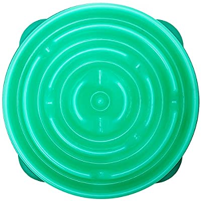 Outward Hound Slow Eating Stop Bloat Dog Bowl