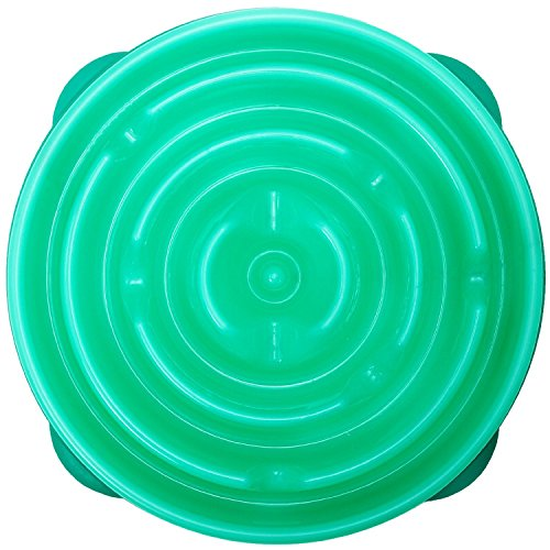Outward Hound Fun Feeder Slow Feed Interactive Bloat Stop Dog Bowl