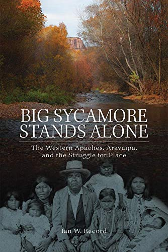 Big Sycamore Stands Alone: The Western Apaches, Aravaipa, and the Struggle for Place (Volume 1) (New Directions in Nativ