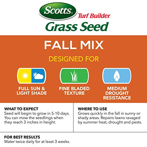 Buy grass seed for drought conditions