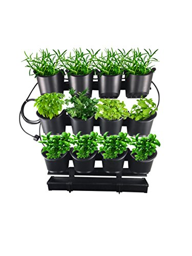 Watex Urban Farming Grow-Your-Own Herb & Flower Starter Kit with Micro Irrigation System (System Vertical Growing)