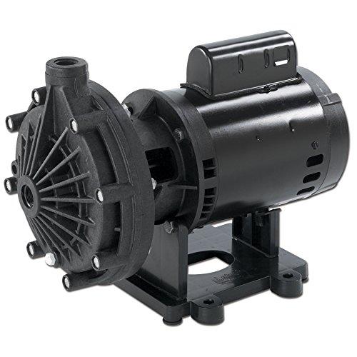 Pentair LA01N Energy Efficient Single Speed Pressure-Side Po