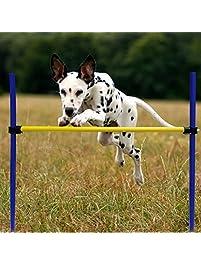 Beau Namsan Dog Agility Training Equipment Dog Outdoor Games,Pet Training Jump  Bar