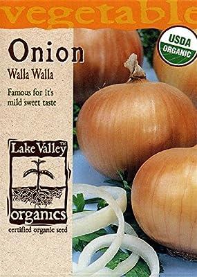 Organic Walla Walla Onion Seeds - 750 mg