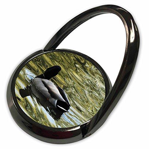 3dRose Krista Funk Creations Migratory Birds - Mallard Duck Swims Away - Phone Ring (phr_18562_1)