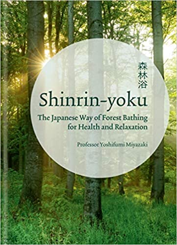Shinrin Yoku The Japanese Way Of Forest Bathing For Health And