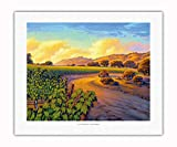 Pacifica Island Art - Vineyard Sunset - Wine Country Art by Kerne Erickson - Fine Art Rolled Canvas Print - 16in x 20in