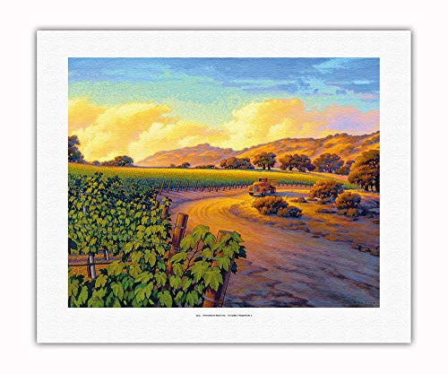 Pacifica Island Art - Vineyard Sunset - Wine Country Art by Kerne Erickson - Fine Art Rolled Canvas Print - 16in x 20in by Pacifica Island Art (Image #1)