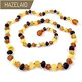 Hazelaid (TM) 22'' Baltic Amber Multicolored Semi-Polish Necklace - Twist Clasp