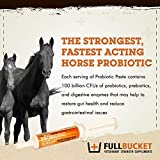 FullBucket Equine Probiotic Paste with