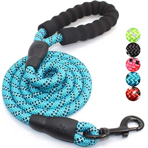 JW Pet Leash Dog Leash Walking Dog Lanyard Luminous Elastic Nylon Leash (Blue)