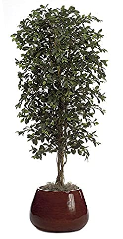 Artificial Ficus Retusa Tree - Green - 6.5 ft Tall | Indoor rated - Pruning Ficus Tree