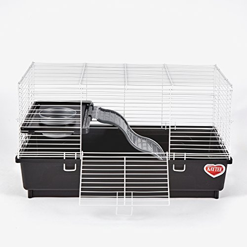 Solid Rat - Kaytee My First Home Habitat for Pet Rat, 24 by 12-Inch