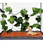 SunGrow-Natural-Looking-Reptile-Plants-Vibrant-Green-Terrarium-Plastic-Plants-65ft-Easy-to-Clean-Silk-Leaves-Creates-Natural-Hiding-Spot-for-Reptiles-and-Amphibians-Suction-Cups-Included